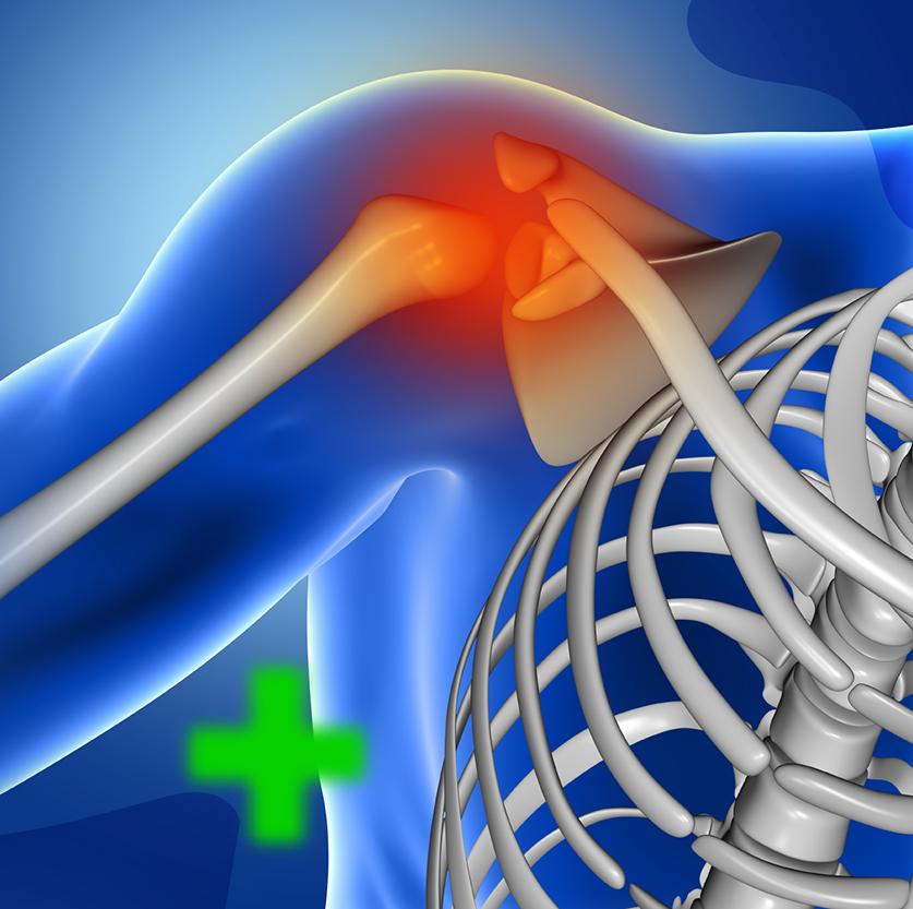 zyropathy-bones