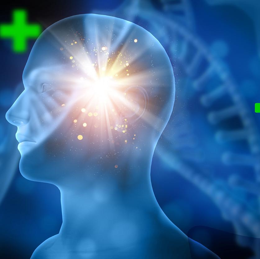 zyropathy-brain