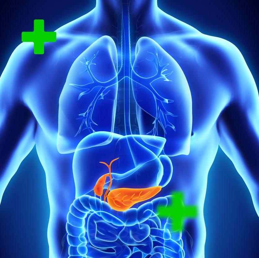 zyropathy-pancreas